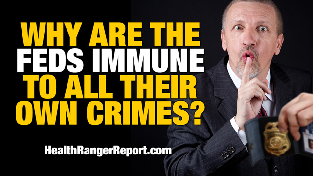 Why-Are-The-Feds-Immune-to-All-Their-Own-Crimes